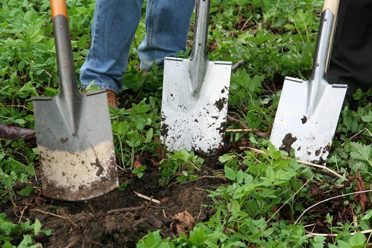Tuinieren is ook mogelijk bij Goeiedag
